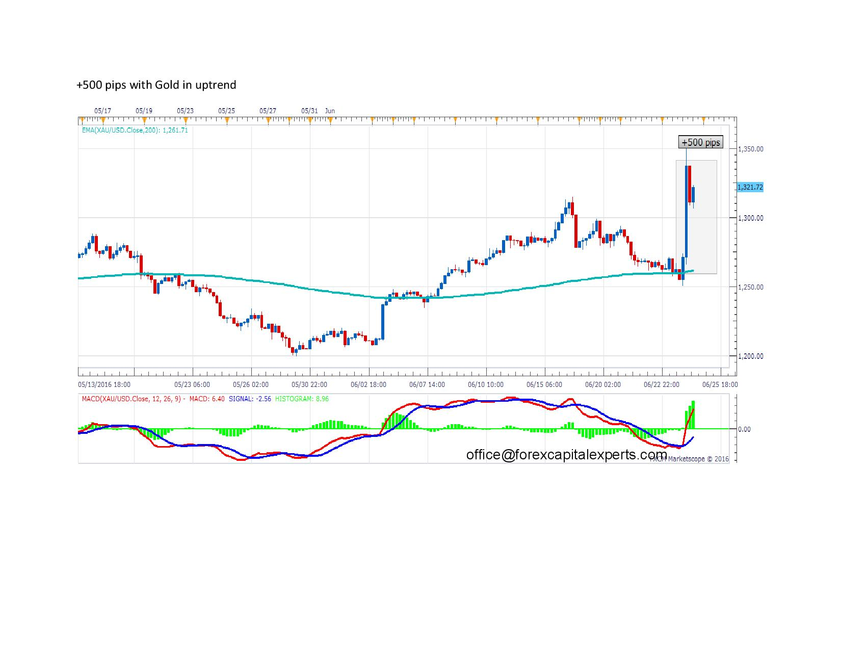 500 pips with Gold in uptrend page 001